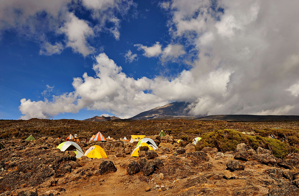 Camping on Lemosho Halfway to Kilimanjaro Top